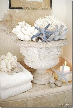 Home decorating ideas - Coastal decor vignette with sea shells in a neutral color palette, perfect for a bathroom.