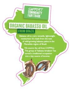 Babassu oil is a very versatile, lightweight moisturizer. It's made from the nuts of wild-growing babassu palms in the Maranhao region of Brazil. We source the oil from COPPALJ. This group of 'babassu breakers' has turned a traditional occupation into a key source of income.