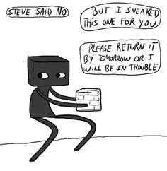 Can I borrow one of Steve's blocks?