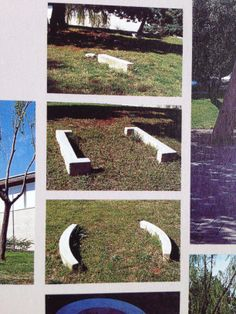 Art/type interacting with natural surroundings