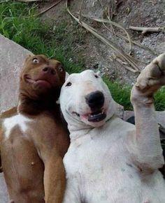 Selfie....rs