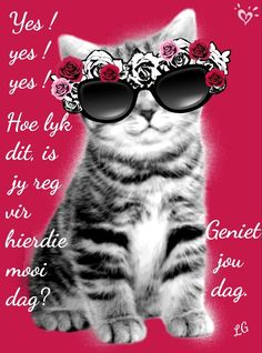 Good Morning Wishes, Good Morning Quotes, Lekker Dag, Goeie More, Afrikaans Quotes, Strong Quotes, Happy Day, Beautiful Pictures, Cute