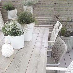 Decorazioni per la tavola in giardino