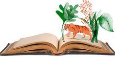 Lezen en stilte gaan goed samen. Vier keer boeken over stilte en simpeler leven. Winter in Maine van auteur Gerard Donovan, bijvoorbeeld.
