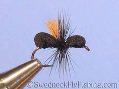 Tan Bugs//Fly Tying Size 16//18 Ant Bodies Between 75 and 100