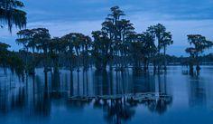 Banks Lake, GA. Wildlife Refuge  View On Black     http://viettelidc.com.vn