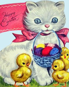 The Easter Kitty Card