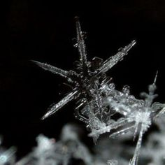 learn to make a forever snowflake