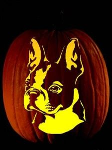 Happy Halloween! Final Day To Enter Our Halloween Contest!