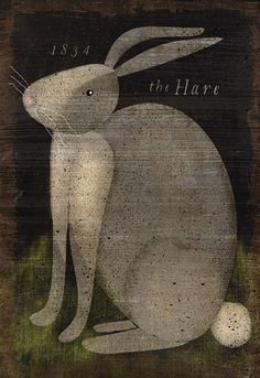 The Hare Portrait