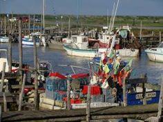 Port du Bec ou Port de l'Epoids ou Port Chinois ( à cause de ses nombreux embarcadères en bois) se situe à Bouin en Vendée face à l'ile de Noirmoutier C'est un port ostréicole avec des centaines de professionnels de l'huitre qui produisent environ 10 000 T/an. Mais c'est également un port de pêche côtière où il fait beau se promener à la rentrée des bateaux ! Quelques cabanes de dégustation sont... - Bouin - Port du Bec - Vendée