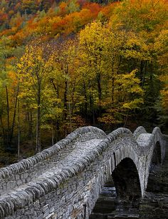 The famous roman Bow Bridge called Ponte dei Salti in Verzasca Valley, Ticino, Switzerland