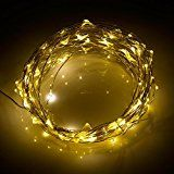 niceEshop(TM) 200 LED Fairy String Lights Ultra Thin Copper Wire Starry Light 65ft(20m) 6v Power Adapter For... christmas deals week