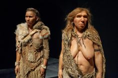 Sapiens et Néandertal