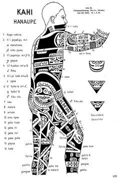Tavola di von Steinen - Tatuaggi Isole Marchesi