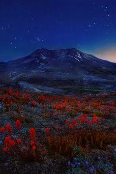 Starlit Volcano, Mt. St. Helens, Washingtonby Trevor Anderson