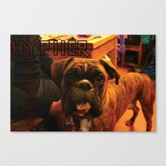 Acoustic Typography: Hypher Productivism [DOG] Stretched Canvas by David Nuh Omar - $85.00