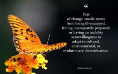 Fear of change usually stems from being ill-equipped, feeling inadequately prepared, or having an inability or unwillingness to adapt to cultural, environmental, or evolutionary diversification. Stems, Compassion, Environment, Change, Culture, Feelings, Books, Movie Posters, Drift Wood