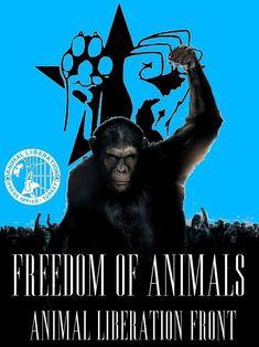 #AnimalLiberation