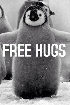 free hugs from a Baby penguin, I would love that.