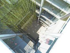 11-Tau+Atrium+Rendering+by+Spillman+Farmer+Architects+2012.jpg (1000×770)
