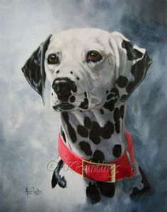 Dalmatian+oil+portrait,+painting+by+artist+Anne+Zoutsos