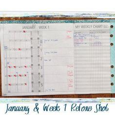 January Monthly View & Week 1 Before Shot #filofax #daytimer #franklin covey #diyfish #lifemapping #planner #organization
