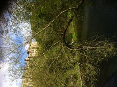 Durham 2013. 11/05/2013