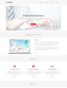 Colibri is a free Bootstrap HTML5 template for business websites.