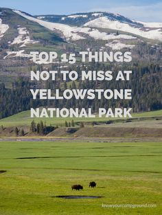 Too much to do and not enough time? Check out the top 15 things NOT to miss on your next trip to Yellowstone National Park! : Too much to do and not enough time? Check out the top 15 things NOT to miss on your next trip to Yellowstone National Park! Yellowstone Nationalpark, Yellowstone Park, Yellowstone Attractions, West Yellowstone Montana, Us National Parks, Grand Teton National Park, West Coast Road Trip, California Camping, Places To Travel