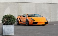 #Lamborghini #Gallardo isn't expensive enough to be featured on the Top 10 Most Expensive Cars. http://www.mostexpensivecartoday.com/