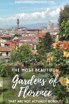 9 beautiful gardens of Florence... that are not actually Boboli. Tips from a local tour guide!