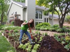 Get inexpensive gardening ideas from Shawna Coronado's '101 Organic Gardening Hacks' and the experts at DIY Network's Made Remade.
