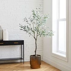 A green thumb isn't required with our Faux Olive Tree, which makes a stylish statement in any space. This tree is carefully assembled to look just as lush and lifelike as the real deal. Lotus Plant, Palm Plant, Baby Furniture, Furniture Decor, Faux Olive Tree, Room Planning, Faux Plants, Bedding Shop, Custom Rugs