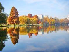 Simetrie în culori autumnale. Parcul Herăstrău. Bucureşti.