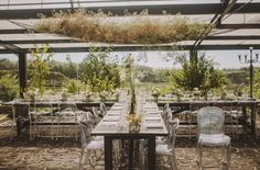 Wild garden party wedding vibes with wood feasting tables and ghost chairs at Areias do Seixo Hotel in Portugal.