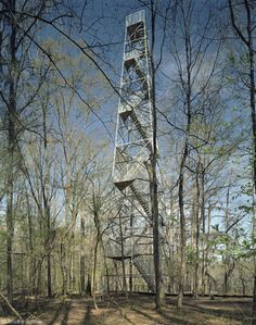 #RuralStudio Perry Lakes Park Birding Tower // Marion, AL // 2005 Thesis Project  Standing exactly 100ft. out of the ground the tower offers birders the unique opportunity to view birds in their habitats above the tree canopy. A decommissioned fire tower purchased for 10 dollars, four students deconstructed, re-galvanized and re-built the tower in its new surroundings. In addition the tower was given new stairs and a carefully designed boardwalk and handrail that zig-zags between the trees…