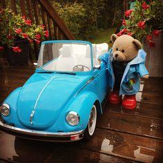 New wheels for my Teddy Bear Giant Teddy Bear, Cute Teddy Bears, Love Bear, Big Bear, Teddy Hermann, Teddy Bear Cartoon, Teddy Bear Pictures, Bear Wallpaper, Tatty Teddy