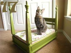 24 Christmas Gifts for Pets|Random Tuesdays