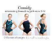 Cassidy girls swimsuit & leotard - via @Craftsy