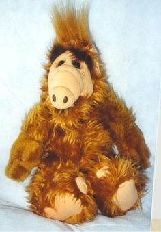 Alf! We had one where you put a cassette in his chest to make him talk - but it kept breaking. Waah.
