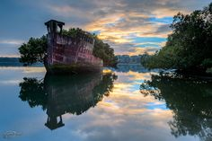 31 Haunting Images of 24 Abandoned Places That Will Give You Goose Bumps; This image is a Floating Forest in Sydney, Australia; Some of these places are here in the US! Abandoned Ships, Abandoned Buildings, Abandoned Places, City Buildings, Beautiful World, Beautiful Images, Beautiful Sky, Places Around The World, Around The Worlds