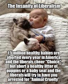 YES!  Although...I am a lover of animals as well, but just think about this!!  You make changes or fight for animals to live, but you're ok with and support human life being killed?
