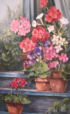 Geraniums original watercolor painting ~~~ anyone know what those white trumpet like looking flowers are??