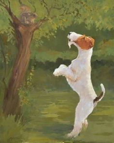 Wire Hair Fox Terrier eying squirrel! :-)  ?Mary Beacon
