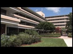 An affordable Orlando hotel can have the best location, amenities, accommodations, and service. That hotel is Rosen Inn at Pointe Orlando, your Orlando vacation International Drive, Disney 2015, Orlando Florida, Hotel Deals, Places Ive Been, Trips, Photo Galleries, Hotels, Bucket