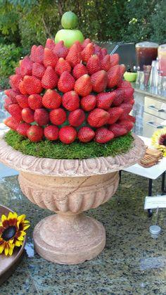 Strawberry topiary for chocolate fountain    followpics.co