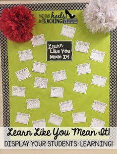 Learn Like You Mean It!