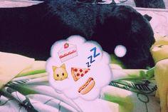 Pensamentos de uma cachorra kkkkkkkk só pensa em comer kkkkkkkkkkk  filha de peixinho peixinho é kkkkk Mel minha linda #instagood #instagramdogs #instalike #vsco  #vs  #vscocam  #vscobrasil  #vscocamphotos #doogs #cachorro #cachorrosdobrasil #cachorrolindo  #cachorrofeliz #dogstagram #instagram #inxtalove #instabgs  #instablog #instablogger #babydog #babydogs #amoanimais #amocachorro #panelaobgs #panelabgs #panelãobgs #bgs #amo by oficialvivianesilva
