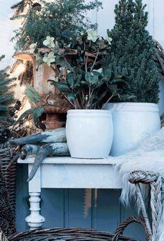 DIY: 8 grønne juleidéer | femina.dk Plants, Nature, Plant, Planting, Planets